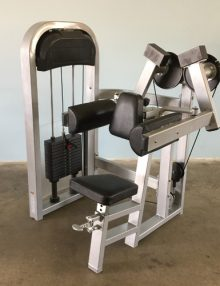 side lateral raise machine