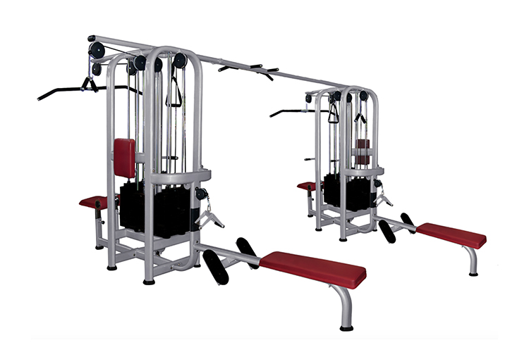 Standard stack jungle gym muscle d fitness